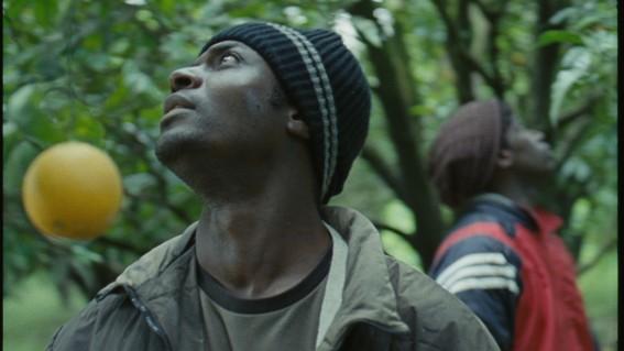 Migra Movies samtalar om flyktingfrågor